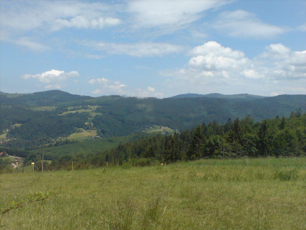 Polana w tle góry i lasy. Krajobraz górski